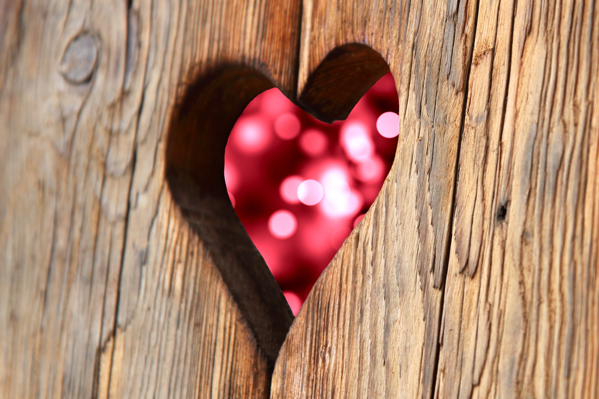Valentine's Day Tips for Every Heart